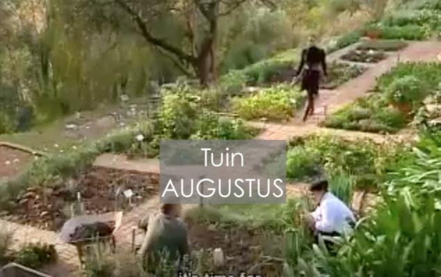 Jeroen bosch tuin bezoek s hertogenbosch